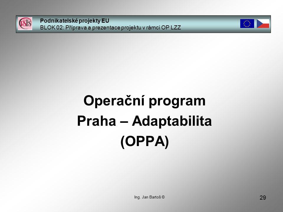 29 Podnikatelské projekty EU BLOK 02: Příprava a prezentace projektu v rámci OP LZZ Ing.