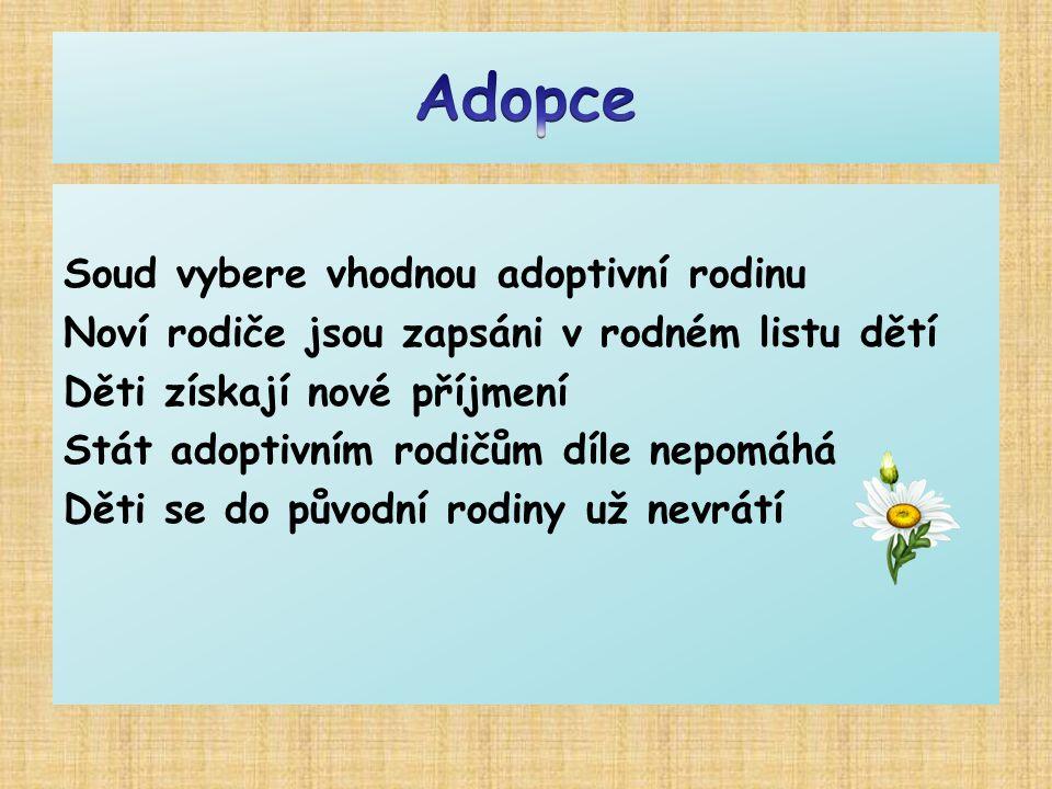 Soud vybere vhodnou adoptivní rodinu Noví rodiče jsou zapsáni v rodném listu dětí Děti získají nové příjmení Stát adoptivním rodičům díle nepomáhá Dět