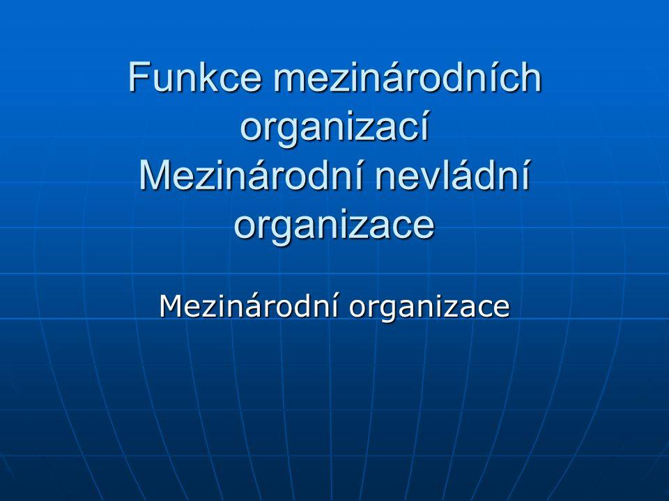 Funkce mezinárodních organizací Mezinárodní nevládní organizace Mezinárodní organizace
