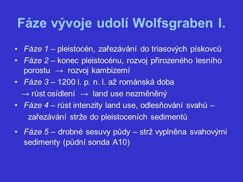 Fáze vývoje udolí Wolfsgraben I. Fáze 1 – pleistocén, zařezávání do triasových pískovců Fáze 2 – konec pleistocénu, rozvoj přirozeného lesního porostu