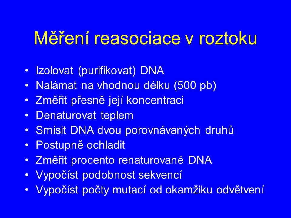 Měření reasociace v roztoku Izolovat (purifikovat) DNA Nalámat na vhodnou délku (500 pb) Změřit přesně její koncentraci Denaturovat teplem Smísit DNA