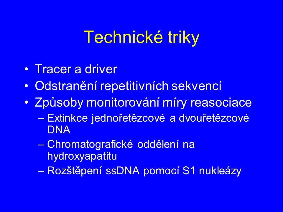 Technické triky Tracer a driver Odstranění repetitivních sekvencí Způsoby monitorování míry reasociace –Extinkce jednořetězcové a dvouřetězcové DNA –C