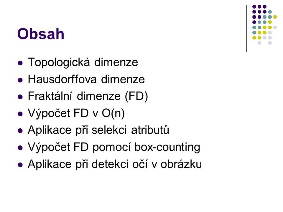 Obsah Topologická dimenze Hausdorffova dimenze Fraktální dimenze (FD) Výpočet FD v O(n) Aplikace při selekci atributů Výpočet FD pomocí box-counting Aplikace při detekci očí v obrázku