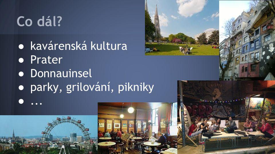 Co dál? ● kavárenská kultura ● Prater ● Donnauinsel ● parky, grilování, pikniky ●...