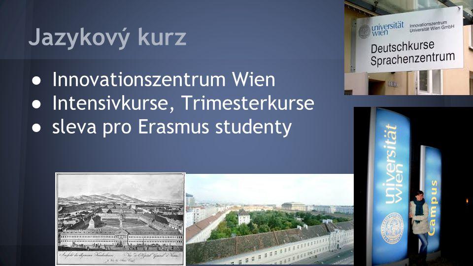 Jazykový kurz ● Innovationszentrum Wien ● Intensivkurse, Trimesterkurse ● sleva pro Erasmus studenty