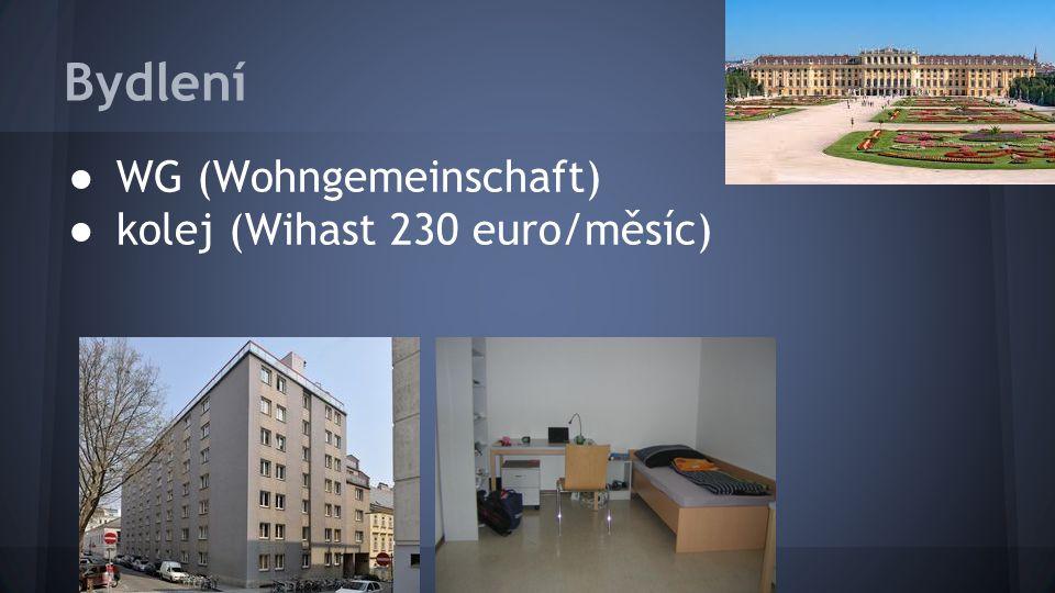 Bydlení ● WG (Wohngemeinschaft) ● kolej (Wihast 230 euro/měsíc)