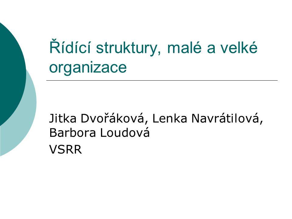 Řídící struktury, malé a velké organizace Jitka Dvořáková, Lenka Navrátilová, Barbora Loudová VSRR