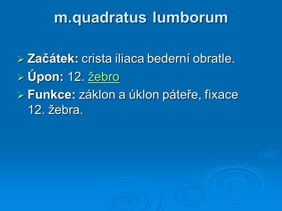 m.quadratus lumborum  Začátek: crista iliaca bederní obratle.  Úpon: 12. žebro žebro  Funkce: záklon a úklon páteře, fixace 12. žebra.