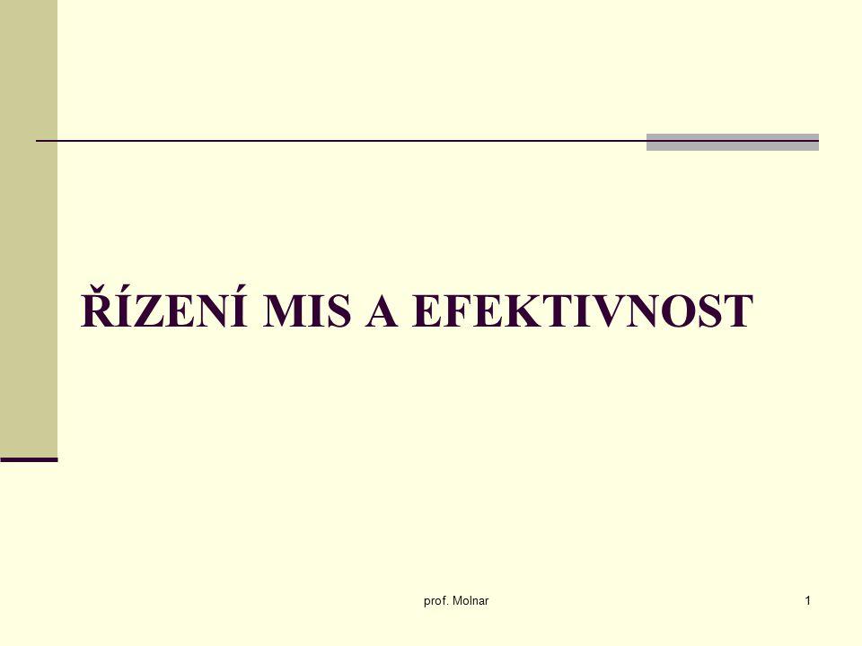 ŘÍZENÍ MIS A EFEKTIVNOST prof. Molnar1