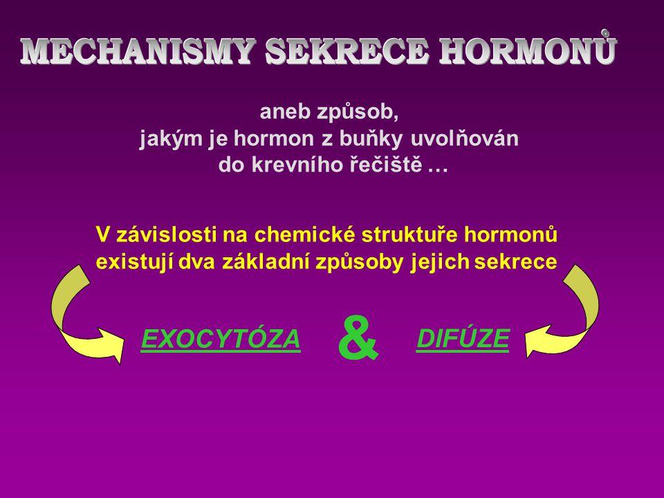 aneb způsob, jakým je hormon z buňky uvolňován do krevního řečiště … V závislosti na chemické struktuře hormonů existují dva základní způsoby jejich sekrece EXOCYTÓZA DIFÚZE &