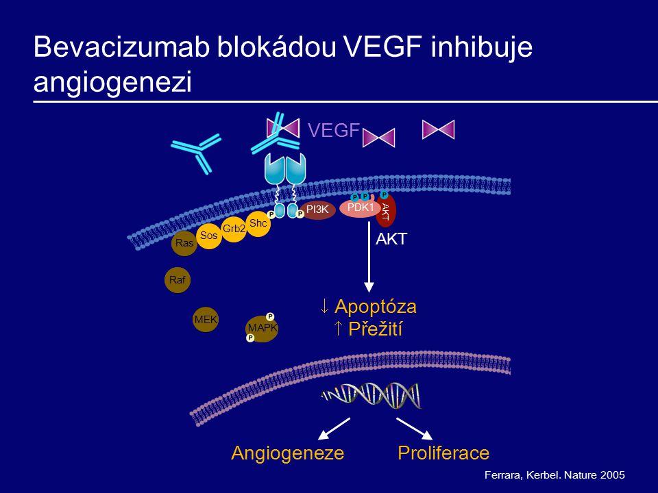 Ras Bevacizumab blokádou VEGF inhibuje angiogenezi Ferrara, Kerbel. Nature 2005 MAPK AKT MEK Raf Sos Grb2Shc AKT PI3K PDK1 ProliferaceAngiogeneze  Ap