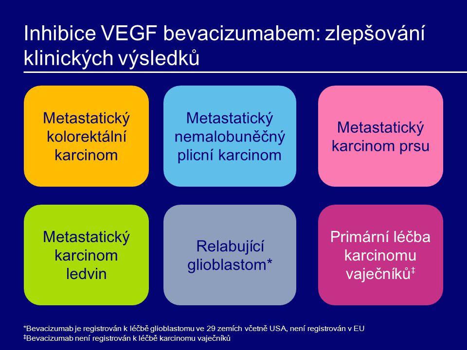 Inhibice VEGF bevacizumabem: zlepšování klinických výsledků *Bevacizumab je registrován k léčbě glioblastomu ve 29 zemích včetně USA, není registrován v EU ‡ Bevacizumab není registrován k léčbě karcinomu vaječníků Metastatický kolorektální karcinom Metastatický nemalobuněčný plicní karcinom Metastatický karcinom prsu Metastatický karcinom ledvin Relabující glioblastom* Primární léčba karcinomu vaječníků ‡