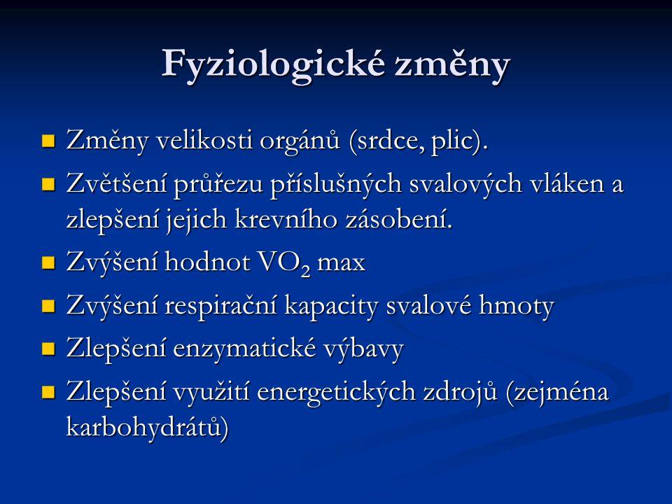 Fyziologické změny Změny velikosti orgánů (srdce, plic). Změny velikosti orgánů (srdce, plic). Zvětšení průřezu příslušných svalových vláken a zlepšen
