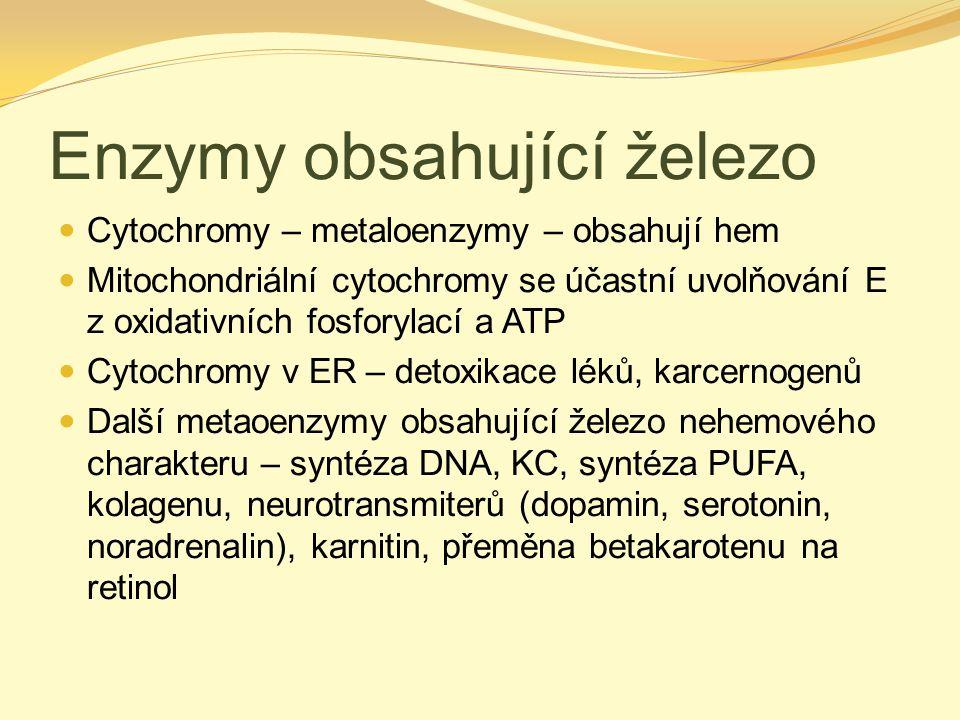 Enzymy obsahující železo Cytochromy – metaloenzymy – obsahují hem Mitochondriální cytochromy se účastní uvolňování E z oxidativních fosforylací a ATP