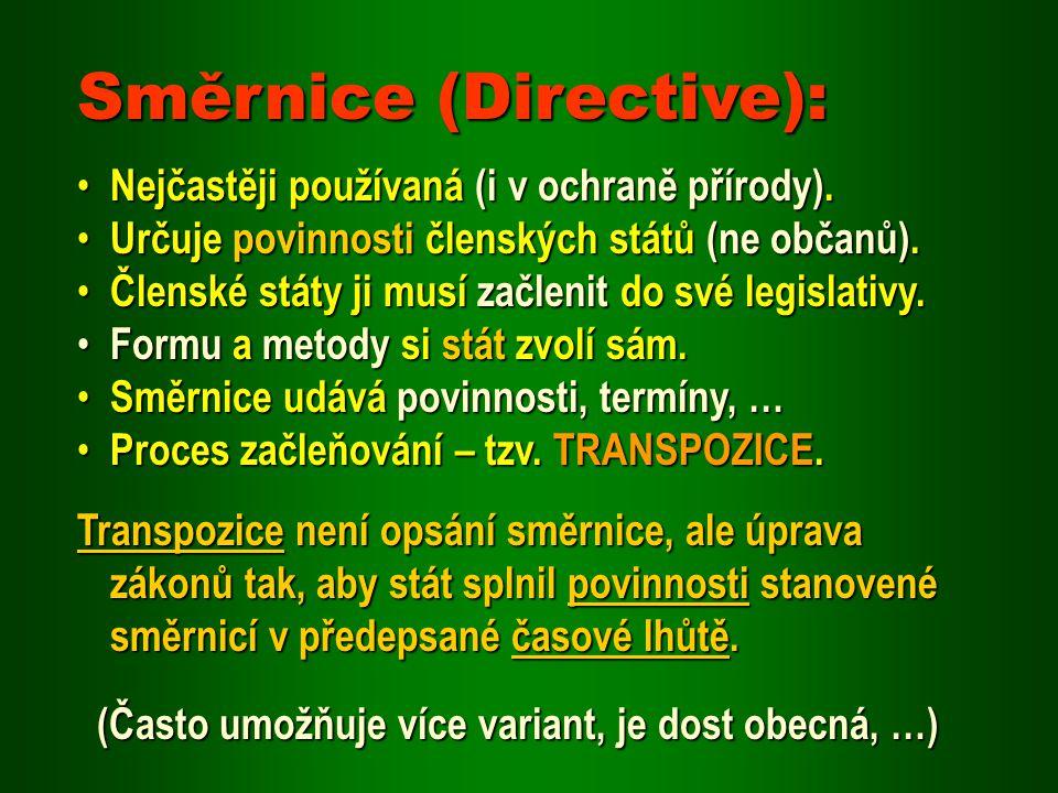 Nařízení (Regulation): Po přijetí se automaticky stává součástí legislativy členských států – přímá závaznost.