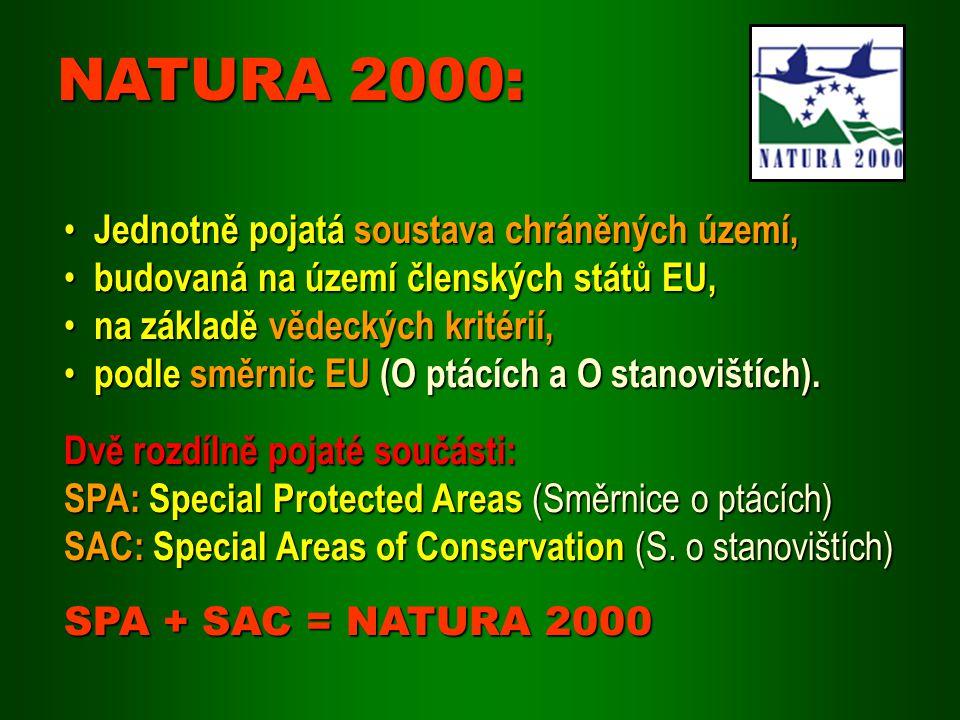 Evropsky významné lokality Příprava: AOPK ČR Příprava: AOPK ČR Podklad: Mapování biotopů a druhů Podklad: Mapování biotopů a druhů Návrh: Národní seznam – 2 oblasti Návrh: Národní seznam – 2 oblasti Zveřejnění: ve sbírce zákonů (2004) Zveřejnění: ve sbírce zákonů (2004) Projednání: EU (2005, 2006) Projednání: EU (2005, 2006) Doplnění: připravuje se Doplnění: připravuje se Vyhlášení: do 6 let (předběžná ochrana) Vyhlášení: do 6 let (předběžná ochrana)