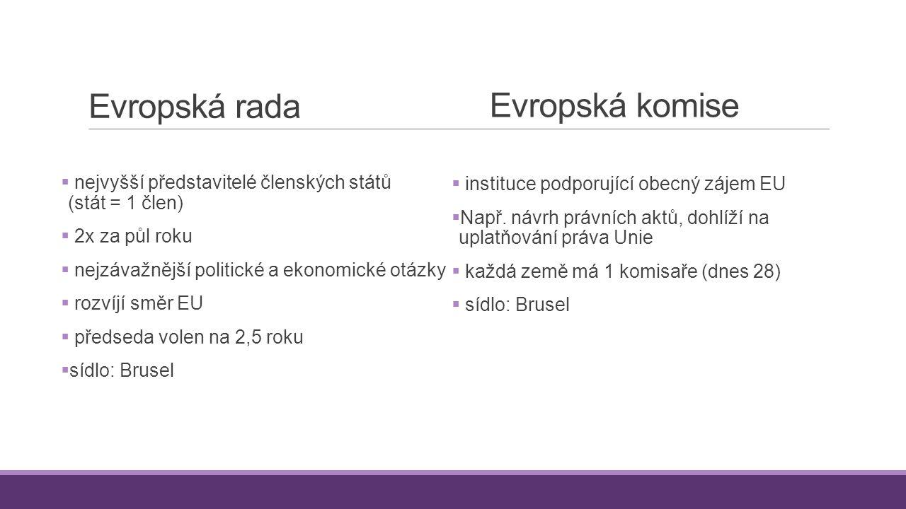 Evropská rada  nejvyšší představitelé členských států (stát = 1 člen)  2x za půl roku  nejzávažnější politické a ekonomické otázky  rozvíjí směr E