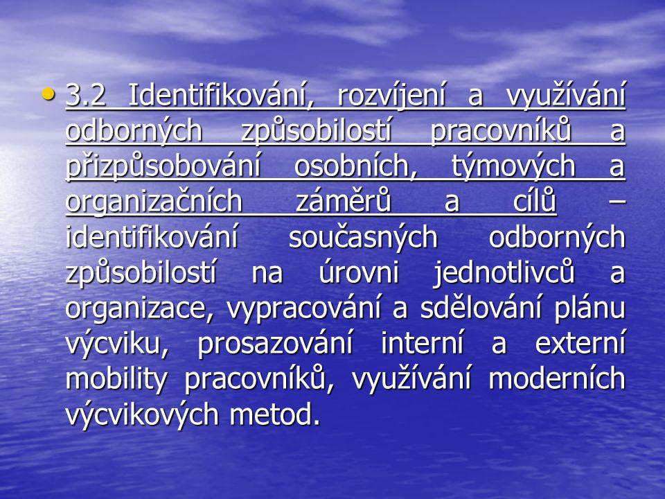 3.2 Identifikování, rozvíjení a využívání odborných způsobilostí pracovníků a přizpůsobování osobních, týmových a organizačních záměrů a cílů – identi