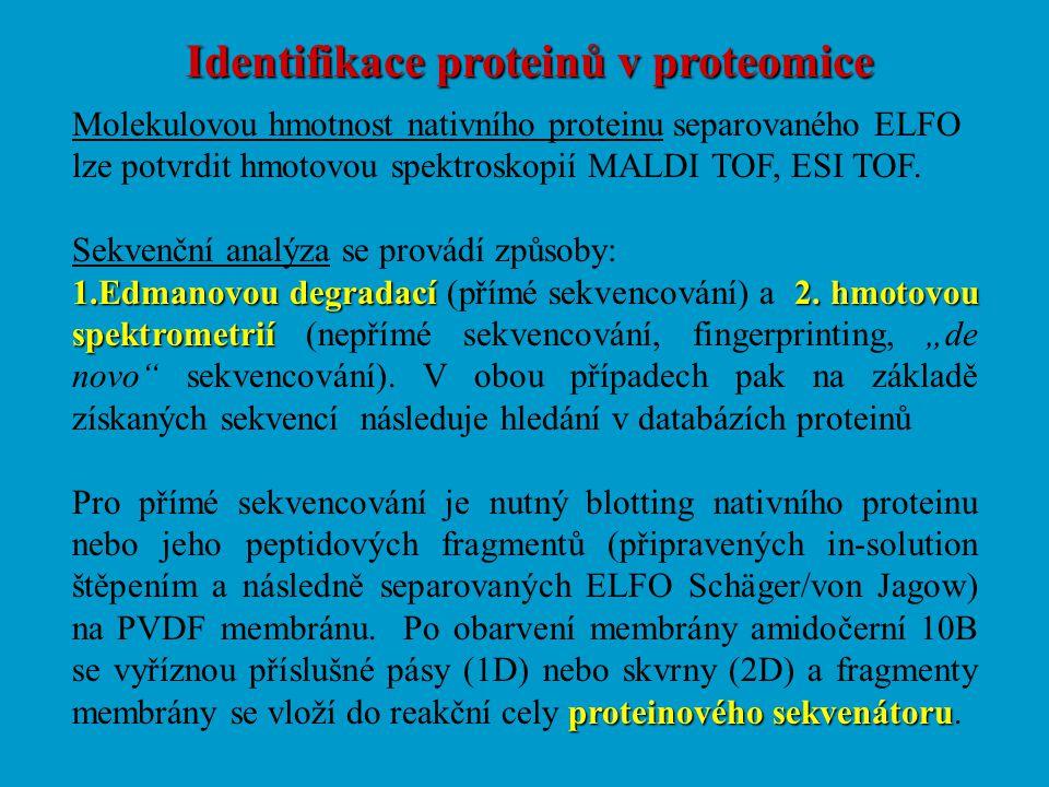 Identifikace proteinů v proteomice Molekulovou hmotnost nativního proteinu separovaného ELFO lze potvrdit hmotovou spektroskopií MALDI TOF, ESI TOF. S