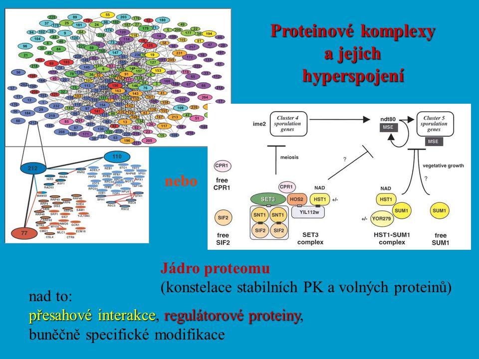 Proteinové komplexy a jejich hyperspojení nebo Jádro proteomu (konstelace stabilních PK a volných proteinů) nad to: přesahové interakce regulátorové p