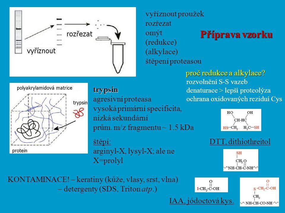 vyříznout proužek rozřezat omýt (redukce) (alkylace) štěpení proteasou trypsin agresivní proteasa vysoká primární specificita, nízká sekundární prům.