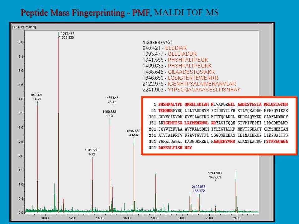 Peptide Mass Fingerprinting - PMF, Peptide Mass Fingerprinting - PMF, MALDI TOF MS masses (m/z) 940.421 - ELSDIAR 1093.477 - QLLLTADDR 1341.556 - PHSH