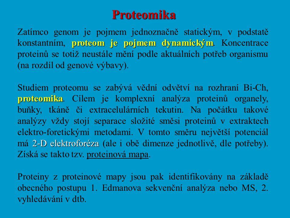 Proteomika proteom je pojmem dynamickým Zatímco genom je pojmem jednoznačně statickým, v podstatě konstantním, proteom je pojmem dynamickým. Koncentra