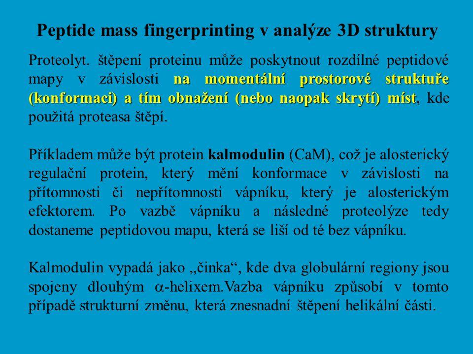 Peptide mass fingerprinting v analýze 3D struktury na momentální prostorové struktuře (konformaci) a tím obnažení (nebo naopak skrytí) míst Proteolyt.