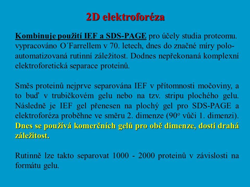 2D elektroforéza Kombinuje použití IEF a SDS-PAGE pro účely studia proteomu. vypracováno O´Farrellem v 70. letech, dnes do značné míry polo- automatiz