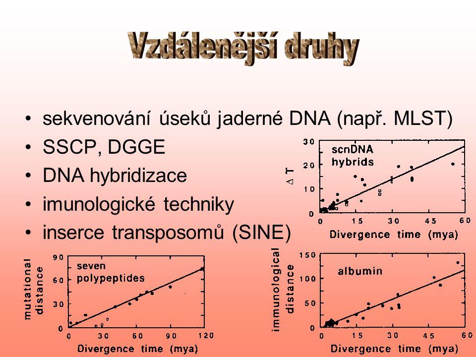 sekvenování konzervativních genů DNA hybridizace studium obsahu genomu imunologické techniky