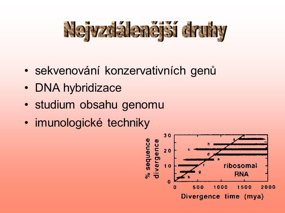 sběr dat –čipy –MLST –ireverzibilní unikátní znaky (SINE) zpracovávání dat –lepší alignment –vážená pasimonie –WEIGBOR, BIONJ –ML pro proteiny (multiprocesorové počítače) –Camin Sokalova maximální parsimonie a unikátní znaky