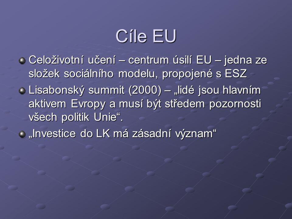 """Cíle EU Celoživotní učení – centrum úsilí EU – jedna ze složek sociálního modelu, propojené s ESZ Lisabonský summit (2000) – """"lidé jsou hlavním aktivem Evropy a musí být středem pozornosti všech politik Unie ."""