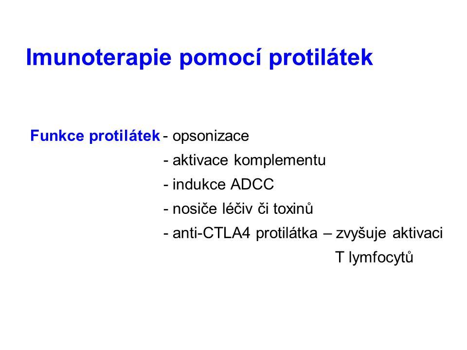 Imunoterapie pomocí protilátek Funkce protilátek - opsonizace - aktivace komplementu - indukce ADCC - nosiče léčiv či toxinů - anti-CTLA4 protilátka –