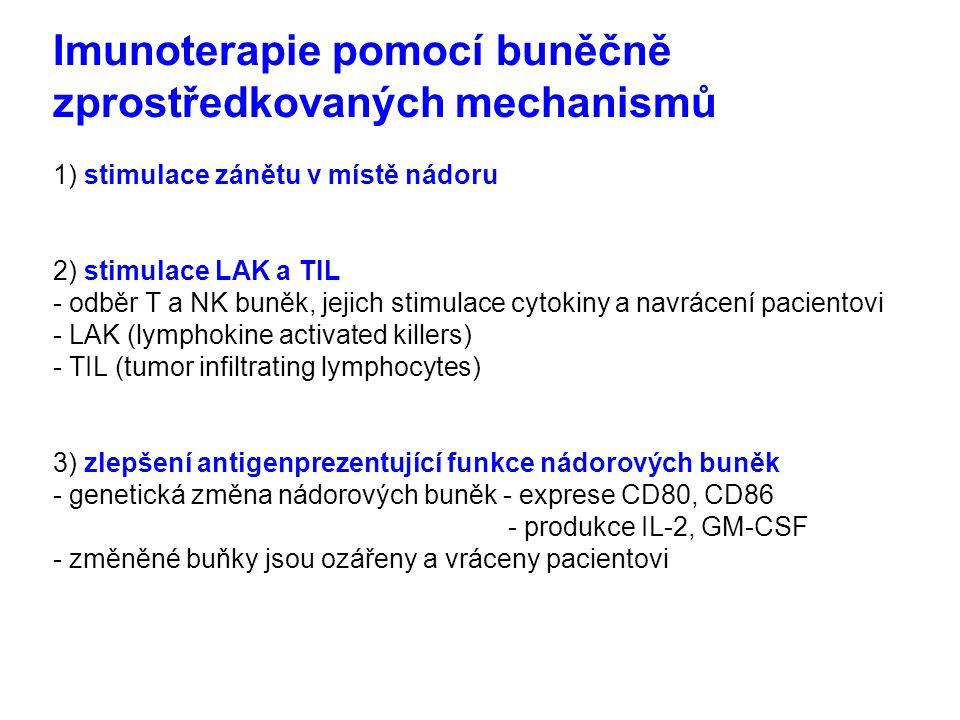 Imunoterapie pomocí buněčně zprostředkovaných mechanismů 1) stimulace zánětu v místě nádoru 2) stimulace LAK a TIL - odběr T a NK buněk, jejich stimul