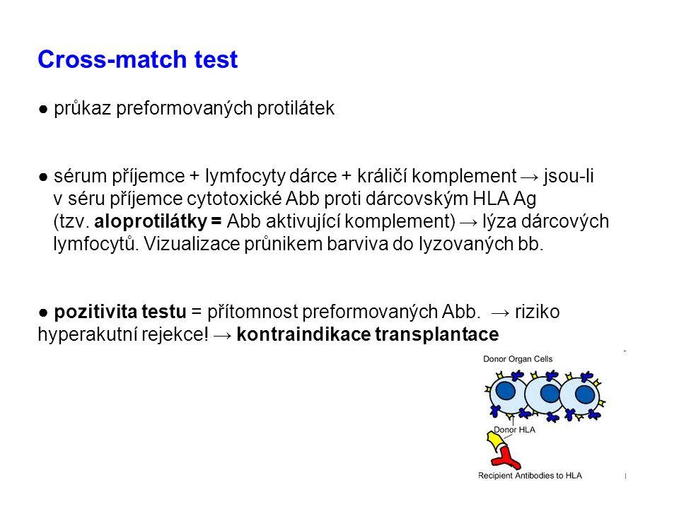 Cross-match test ● průkaz preformovaných protilátek ● sérum příjemce + lymfocyty dárce + králičí komplement → jsou-li v séru příjemce cytotoxické Abb