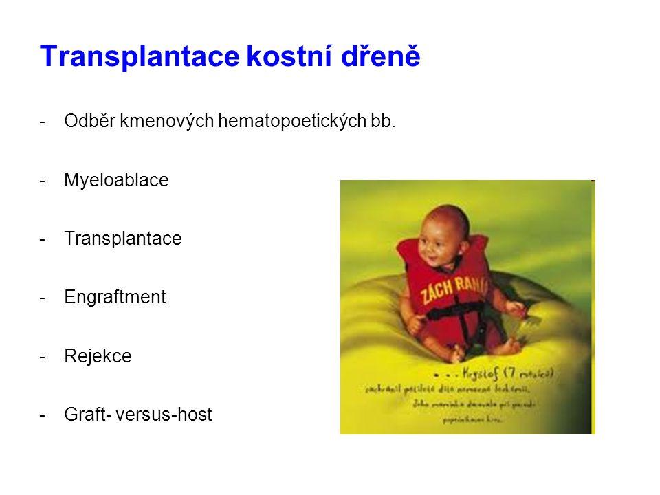 Transplantace kostní dřeně -Odběr kmenových hematopoetických bb. -Myeloablace -Transplantace -Engraftment -Rejekce -Graft- versus-host