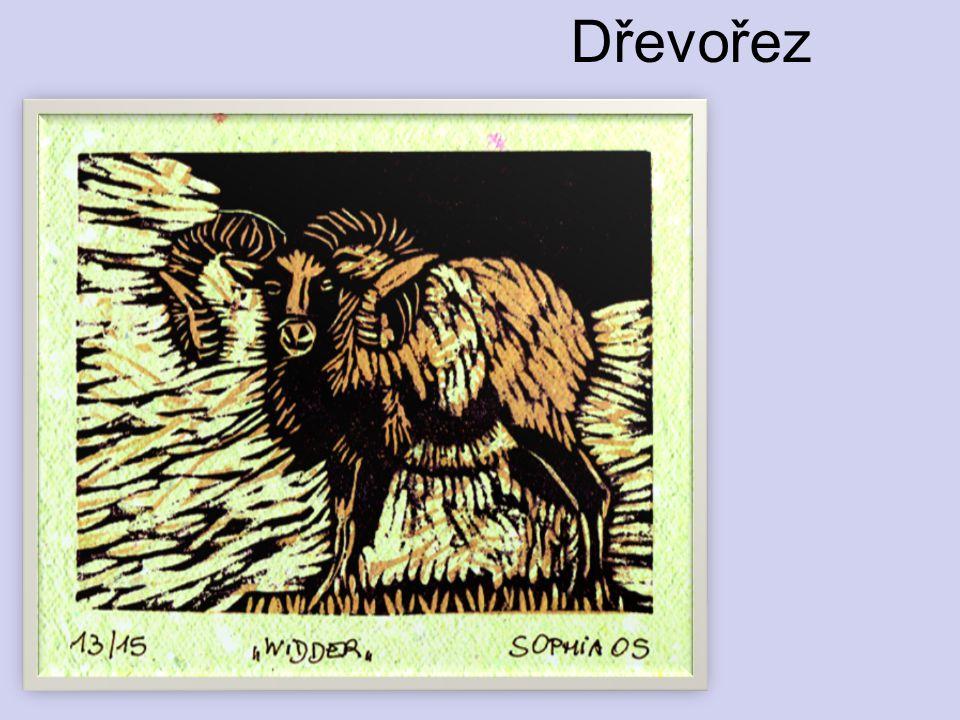 Dřevořez