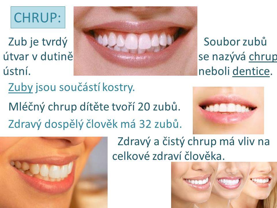 Zub je tvrdý útvar v dutině ústní. Soubor zubů se nazývá chrup neboli dentice. Zuby jsou součástí kostry. CHRUP: Mléčný chrup dítěte tvoří 20 zubů. Zd