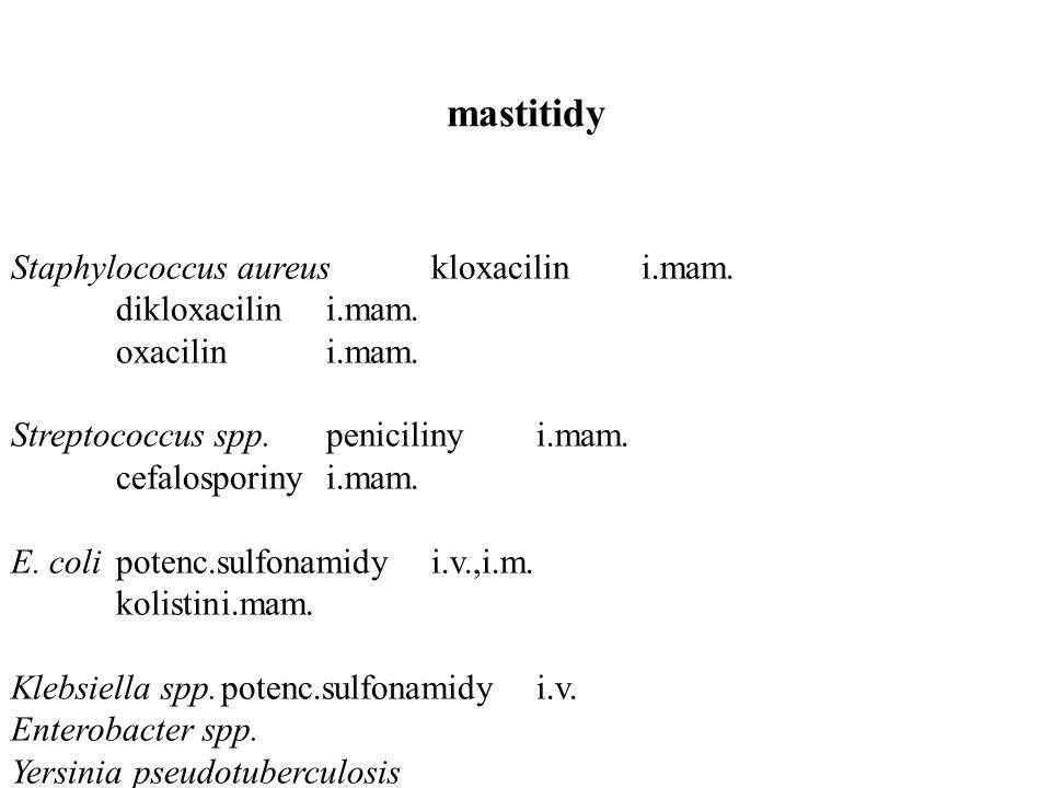 mastitidy Staphylococcus aureuskloxacilini.mam. dikloxacilini.mam.