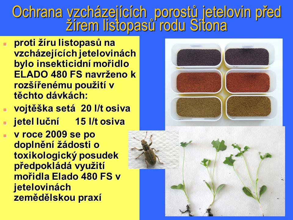 Ochrana vzcházejících porostů jetelovin před žírem listopasů rodu Sitona n proti žíru listopasů na vzcházejících jetelovinách bylo insekticidní mořidlo ELADO 480 FS navrženo k rozšířenému použití v těchto dávkách: n vojtěška setá 20 l/t osiva n jetel luční 15 l/t osiva n v roce 2009 se po doplnění žádosti o toxikologický posudek předpokládá využití mořidla Elado 480 FS v jetelovinách zemědělskou praxí