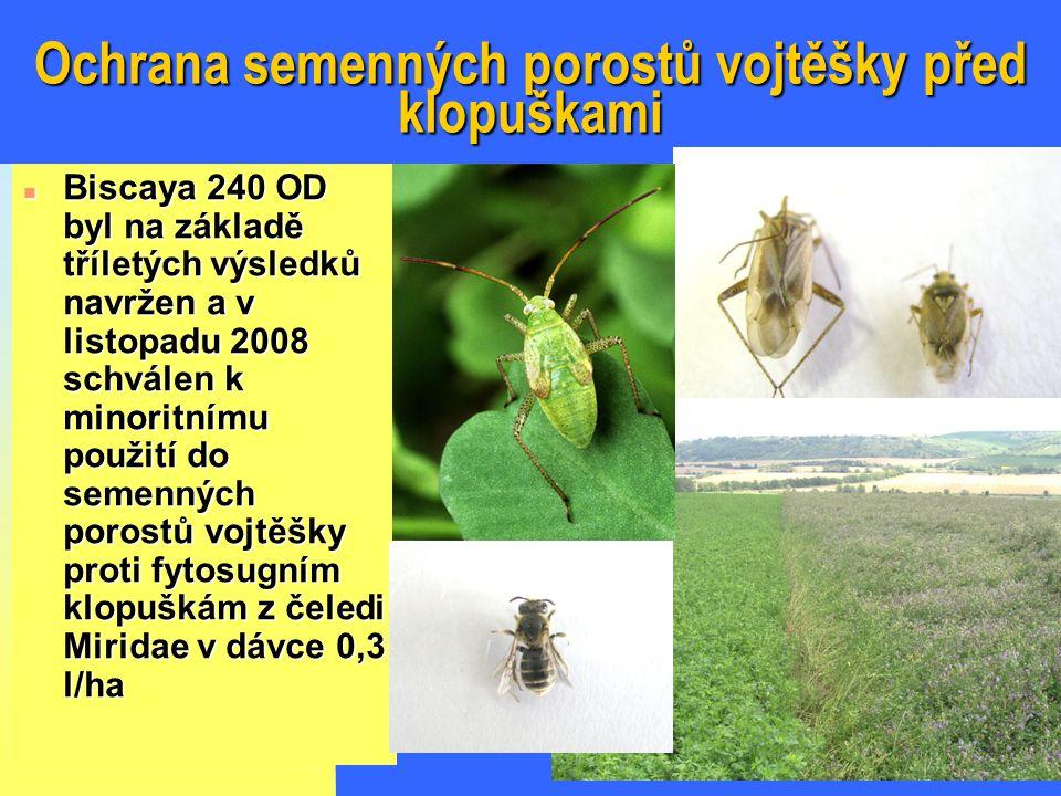 Ochrana semenných porostů vojtěšky před klopuškami n Biscaya 240 OD byl na základě tříletých výsledků navržen a v listopadu 2008 schválen k minoritnímu použití do semenných porostů vojtěšky proti fytosugním klopuškám z čeledi Miridae v dávce 0,3 l/ha