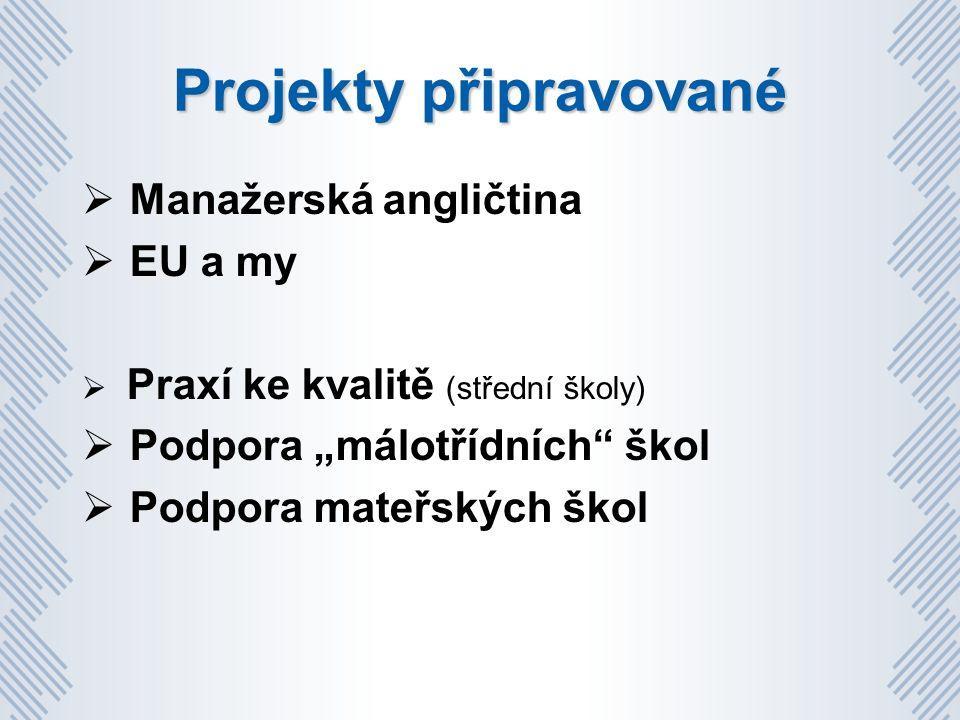"""Projekty připravované  Manažerská angličtina  EU a my  Praxí ke kvalitě (střední školy)  Podpora """"málotřídních škol  Podpora mateřských škol"""