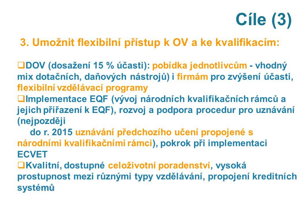 Cíle (3) 3. Umožnit flexibilní přístup k OV a ke kvalifikacím:  DOV (dosažení 15 % účasti): pobídka jednotlivcům - vhodný mix dotačních, daňových nás