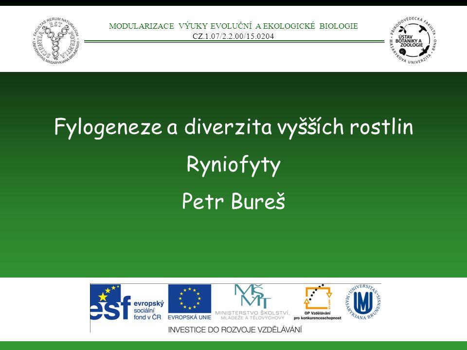 Fylogeneze a diverzita vyšších rostlin Ryniofyty Petr Bureš MODULARIZACE VÝUKY EVOLUČNÍ A EKOLOGICKÉ BIOLOGIE CZ.1.07/2.2.00/15.0204