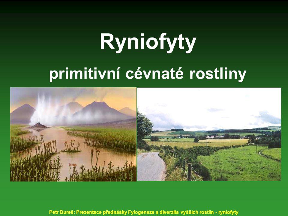 Ryniofyty primitivní cévnaté rostliny Petr Bureš: Prezentace přednášky Fylogeneze a diverzita vyšších rostlin - ryniofyty