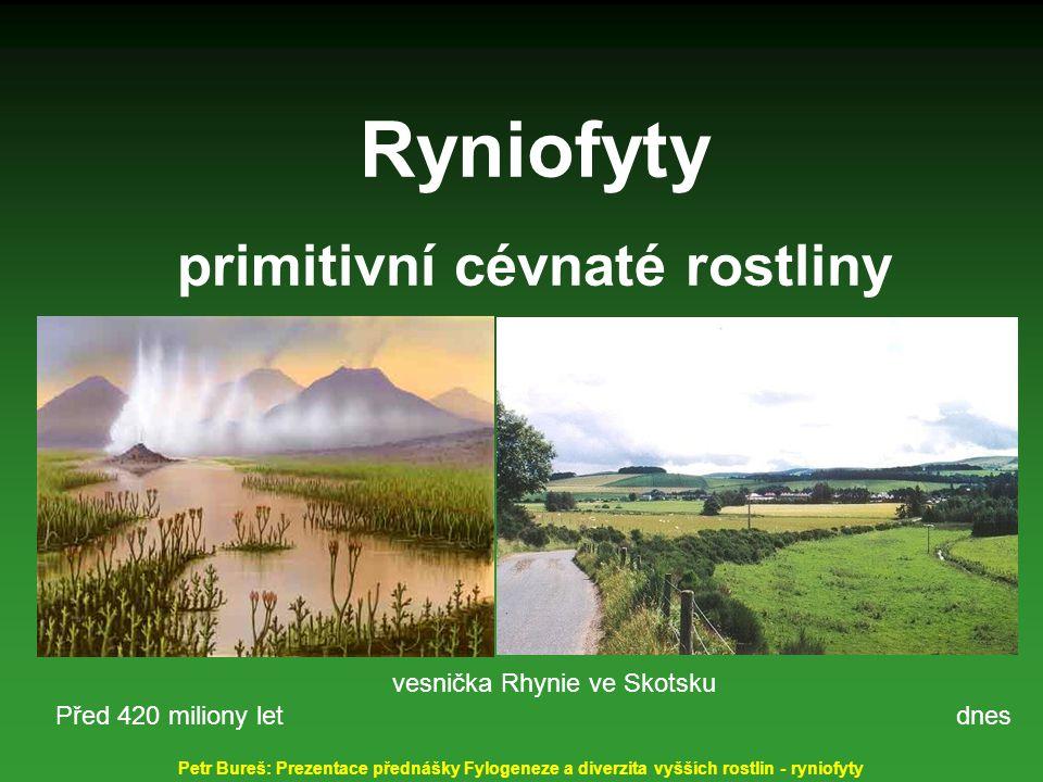 Ryniofyty primitivní cévnaté rostliny vesnička Rhynie ve Skotsku dnes Před 420 miliony let Petr Bureš: Prezentace přednášky Fylogeneze a diverzita vyš