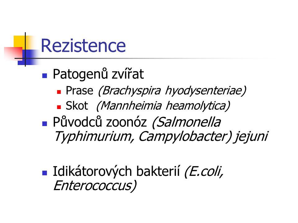 Rezistence Patogenů zvířat Prase (Brachyspira hyodysenteriae) Skot (Mannheimia heamolytica) Původců zoonóz (Salmonella Typhimurium, Campylobacter) jej