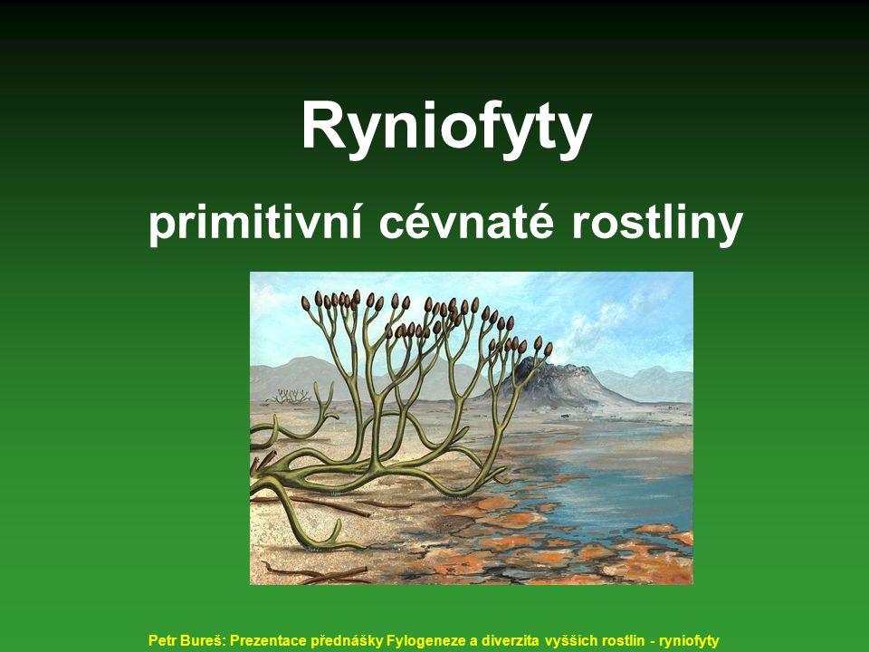 Ryniofyty primitivní cévnaté rostliny vesnička Rhynie ve Skotsku dnes Petr Bureš: Prezentace přednášky Fylogeneze a diverzita vyšších rostlin - ryniofyty