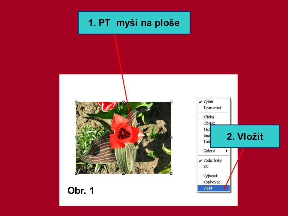 B. Vložení obrázku ze souboru 1. Tlačítko Vložení obrázku 2. Vyberu obrázek 3. Otevřu
