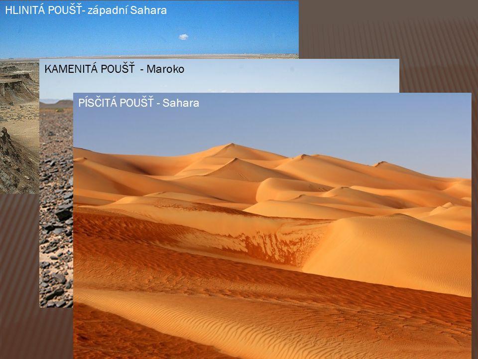 HLINITÁ POUŠŤ- západní Sahara KAMENITÁ POUŠŤ - Maroko PÍSČITÁ POUŠŤ - Sahara